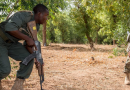 Mali is the proving grounds for the Common Defense